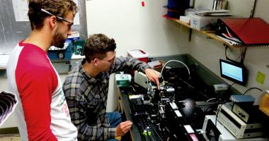 Students perform research in the Wang Lab